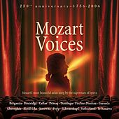 Mozart Voices de Various Artists