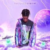 The Last Straw by Aspect Zavi