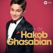 La voix de Hakob Ghasabian von Hakob Ghasabian