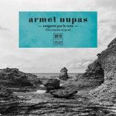Emporté par le vent by Armel Dupas