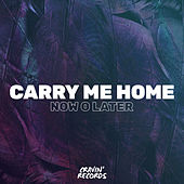 Carry Me Home von Now O Later