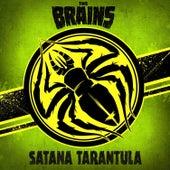 Satana Tarantula de The Brains
