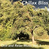 Chill and Relax Music, Vol. 1 von Chillax Bliss