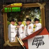 Cuando Abras los Ojos by Los Alegres De La Sierra