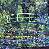 Pachelbel: Some Revisitations of Canon in D Major / Walter Rinaldi:  String Orchestra Works de Various Artists