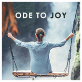 Beethoven: Ode to Joy von Various Artists