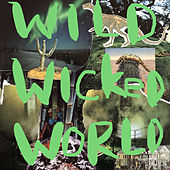 Wild Wicked World by Pancho Morris