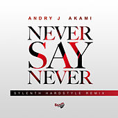 Never Say Never (Sylenth Remix) by Andry J
