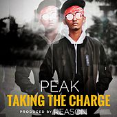Taking The Charge de Peak (New Age)
