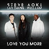 Love You More van Steve Aoki