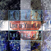 Love Of Your Life - The Remixes de Korvez