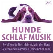 Hunde Schlaf Musik - Beruhigende Einschlafmusik für den Hund, Relaxen und Einschlafen (keine hohen Töne) von Hunde Musik TA