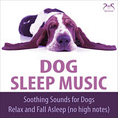 Dog Sleep Music - Soothing Sounds for dogs, relax and fall asleep (no high notes) von Dog Music TA