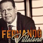 Éxitos by Fernando Villalona