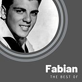 The Best of Fabian van Fabian