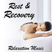Rest & Recovery Relaxation Music by Various Artists