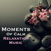 Moments Of Calm Relaxation Music by Various Artists
