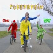 Puberbrein van Stuk