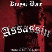 Assassin by Krayzie Bone