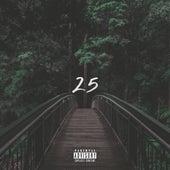 25 by Koab