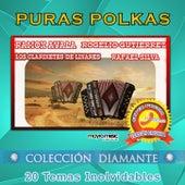 Polkas Y Algo Más by Vários Artistas