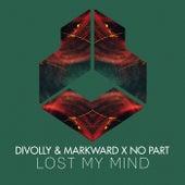 Lost My Mind von Divolly & Markward
