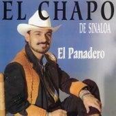 El Panadero de El Chapo De Sinaloa