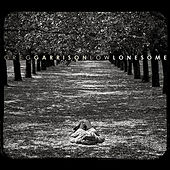 Low Lonesome de Greg Garrison