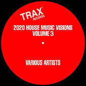 2020 House Music Visions Volume 3 de Various Artists