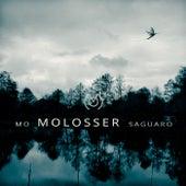 Saguaro de Molosser