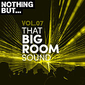 Nothing But... That Big Room Sound, Vol. 07 de Various Artists
