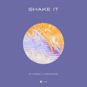 Shake It von JP Candela