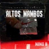Altos Mambos de Nino B