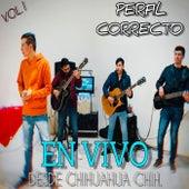 EN VIVO DESDE CHIHUAHUA CHIH., VOL. 1 (En Vivo) by Perfil  Correcto