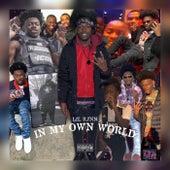 In My Own World von LilRj
