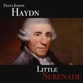 Franz Joseph Haydn - Little Serenade von Mattia Farao