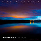 Soft Piano Music: Calm Music For Relaxation, Meditation, Yoga, Spa, Massage, Healing, Wellness, Focus, Concentration, Studying, Reading, Sleeping Music and The Best Music For Sleep van Relaxing Piano Music