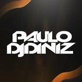 Ela Monta no Pau com a Xereca de DJ Paulo Diniz