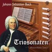 J.S. Bach: Organ Sonatas BWVV 525-530 de Massimiliano Sanca