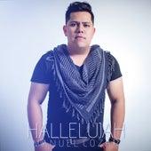 Hallelujah (Cover) by Manuel Cozar