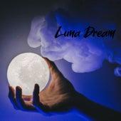 Luna Dream de Various Artists