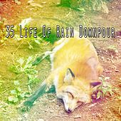 35 Life of Rain Downpour de Rain Sounds and White Noise