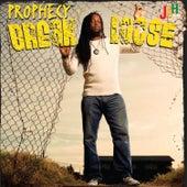 Break Loose de Prophecy