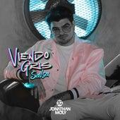 Viendo Gris (Salsa Remix) de Jonathan Moly