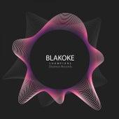Champions (Gosize Remix) de Blakoke