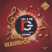 Los Elegidos de Radio Open de Various Artists