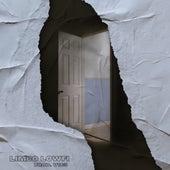Open Door von V1c3