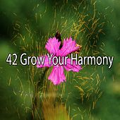 42 Grow Your Harmony de Meditation Spa