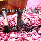 78 Sounds for Focussing von Entspannungsmusik