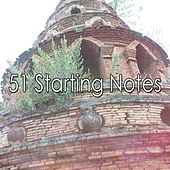 51 Starting Notes de White Noise Therapy (1)